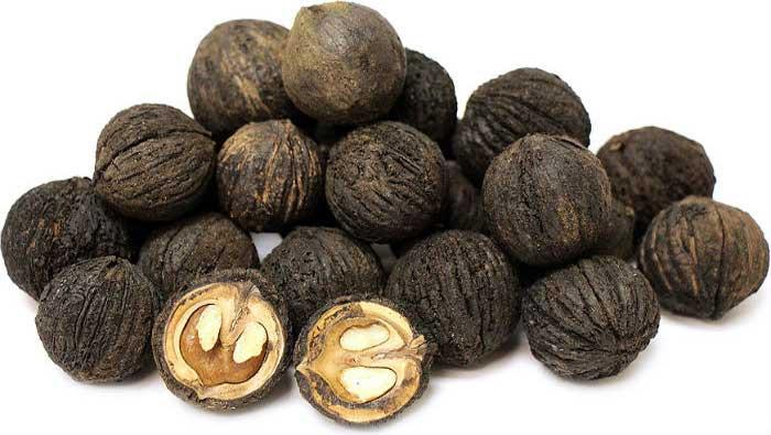 CRNI ORAH - obilje joda i minerala | Crne Mambe | Ljekovito bilje