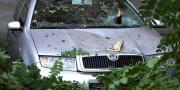 Jaka kiša i vjetar prouzročili štetu na vukovarskom području