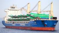 Stigao brod s čeličnom konstrukcijom za Pelješki most