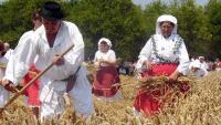 Volim svoju županiju: Najviše glasova fotografiji 'Slavonska polja' | Domoljubni portal CM | Kultura