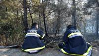Uzrok požara na Zrću bačeni opušak cigarete